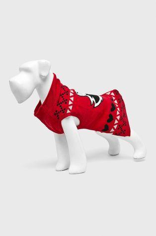 Medicine - Sweter dla psa Xmass