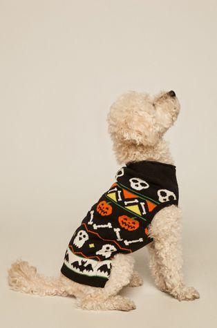 Medicine - Кучешки пуловер Amber Ambient