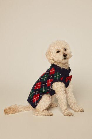 Medicine - Sweter dla psa Acid Bouquet