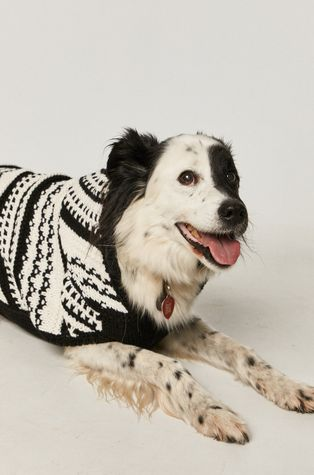 Medicine - Кучешки пуловер Glitch