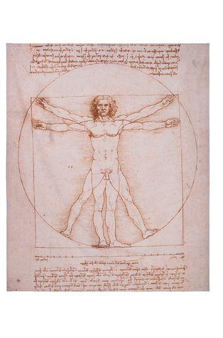 MuseARTa - Törölköző Leonardo da Vinci - The Vitruvian Man