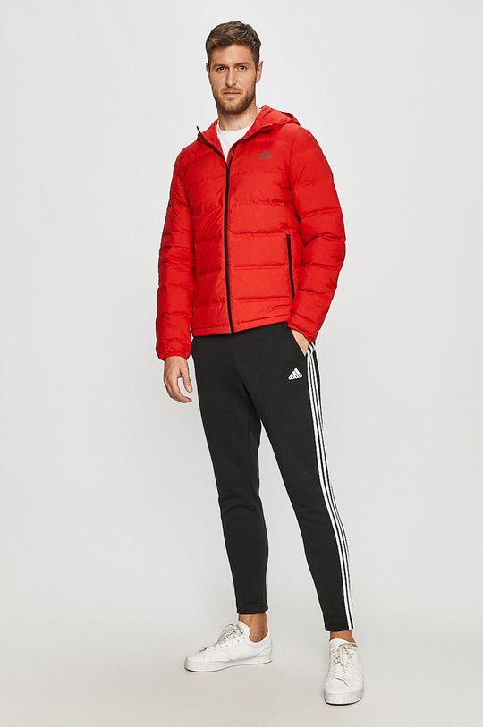adidas Performance - Kurtka puchowa czerwony
