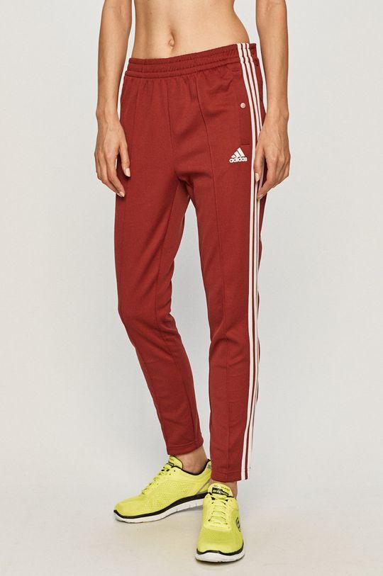 karminowy adidas Performance - Spodnie Damski