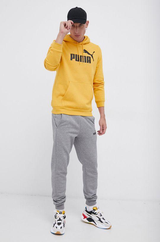Puma - Spodnie szary