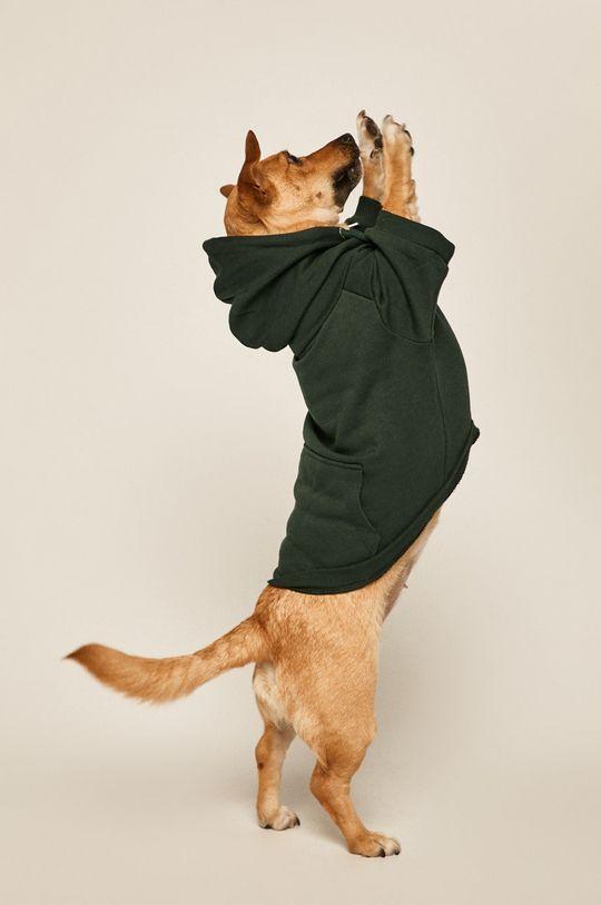tyrkysová Medicine - Mikina pro psa Amber Ambient Unisex
