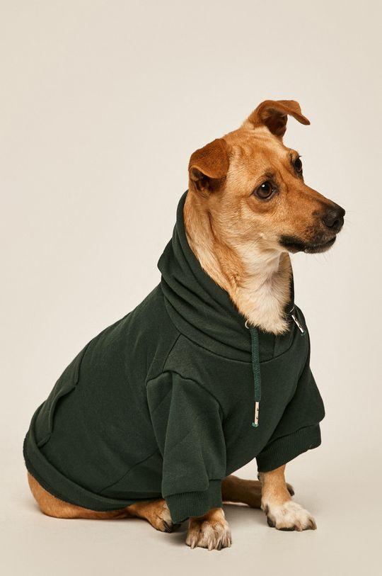 Medicine - Mikina pro psa Amber Ambient <p>60% Bavlna, 40% Polyester</p>