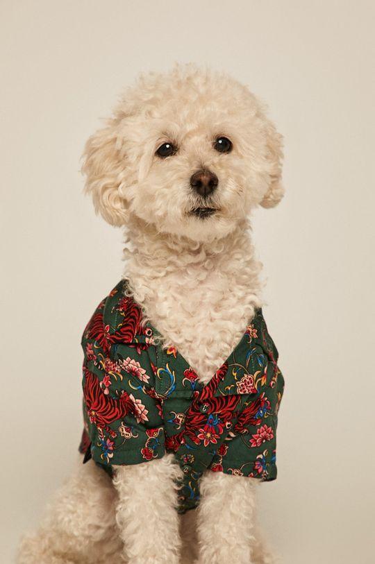 tyrkysová Medicine - Košile pro psa Acid Bouquet Unisex