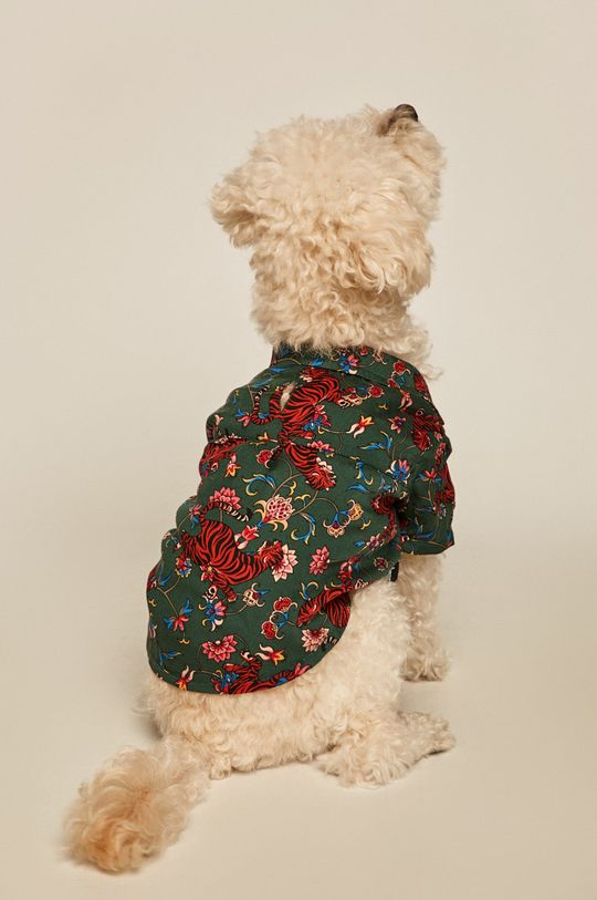 Medicine - Košile pro psa Acid Bouquet tyrkysová