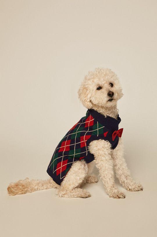 multicolor Medicine - Sweter dla psa Acid Bouquet Unisex