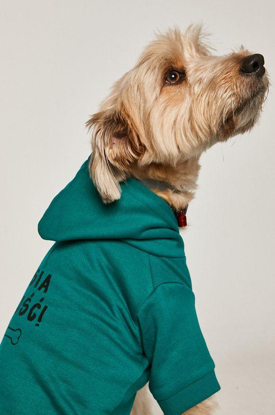 zielony Medicine - Bluza dla psa Midnight Queen Damski