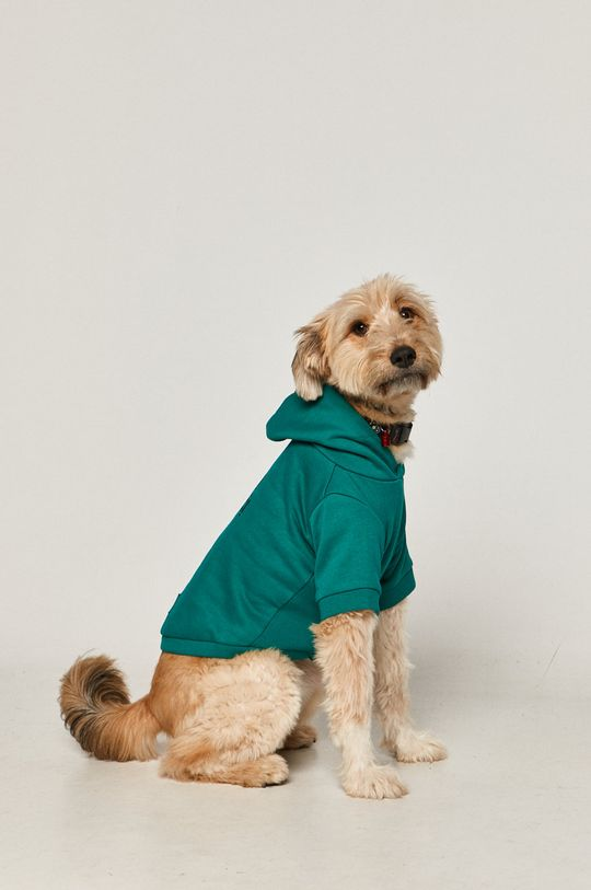 Medicine - Bluza dla psa Midnight Queen 60 % Bawełna, 40 % Poliester