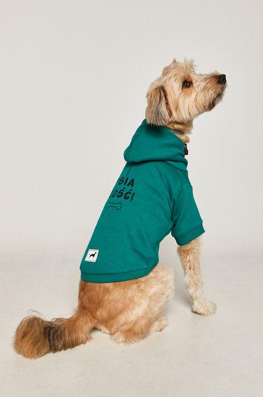 zielony Medicine - Bluza dla psa Midnight Queen