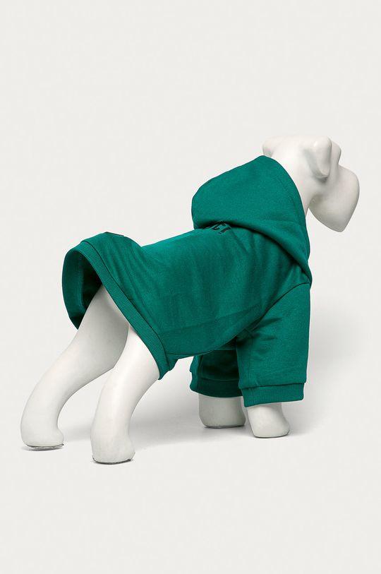 Medicine - Bluza dla psa Midnight Queen