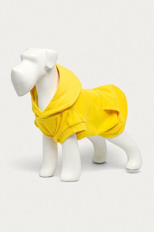 żółty Medicine - Bluza dla psa Midnight Queen Damski