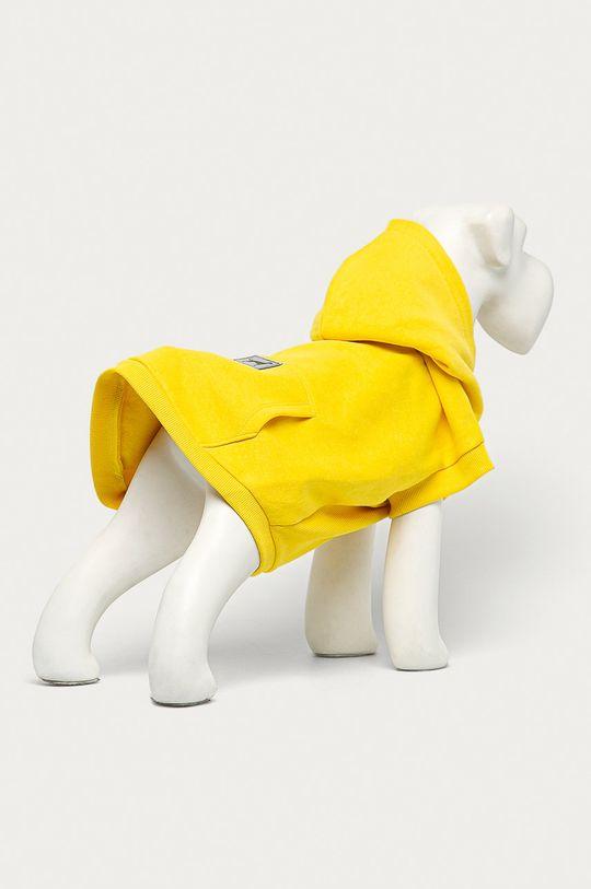 Medicine - Bluza dla psa Midnight Queen żółty