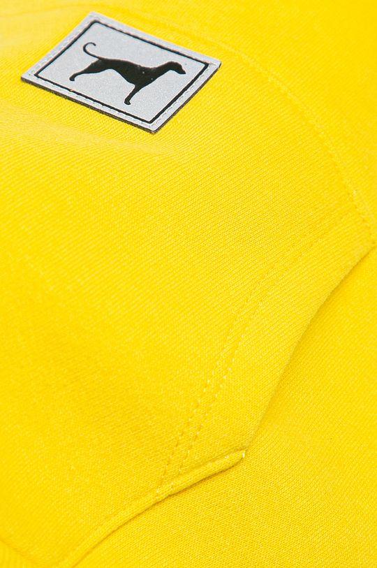 żółty Medicine - Bluza dla psa Midnight Queen