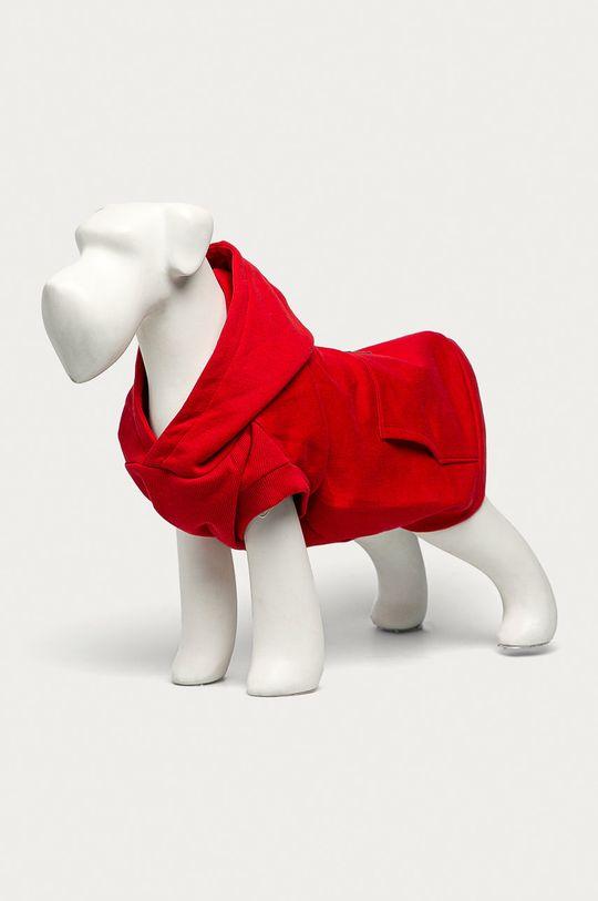 czerwony Medicine - Bluza dla psa Midnight Queen Damski