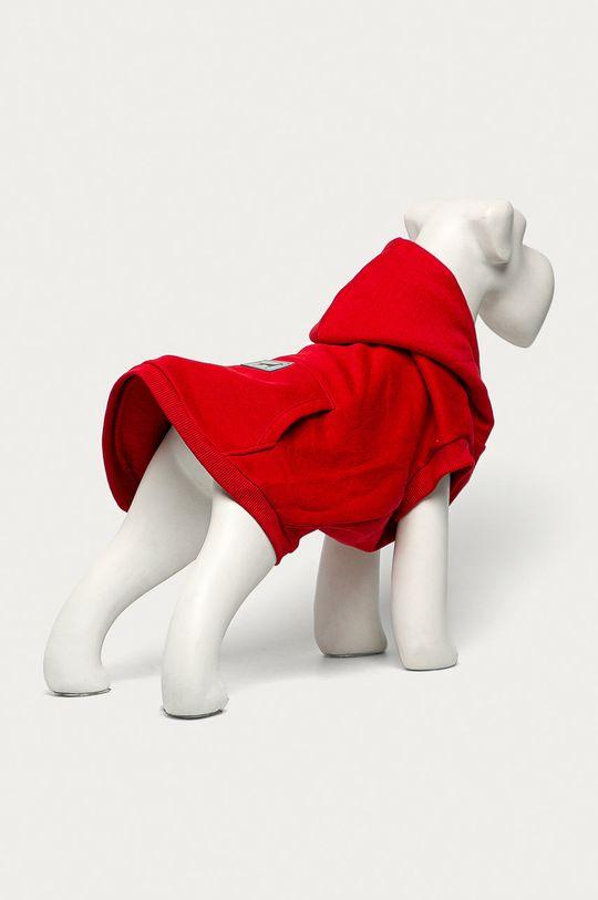 Medicine - Bluza dla psa Midnight Queen czerwony