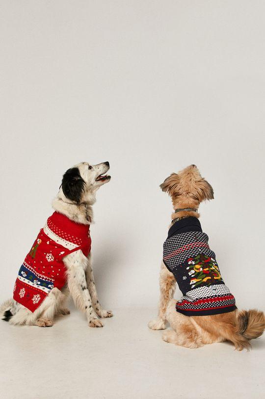 Medicine - Sweter dla psa X-mass by Patryk Mogilnicki