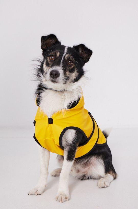Medicine - Kurtka dla psa Essential bursztynowy
