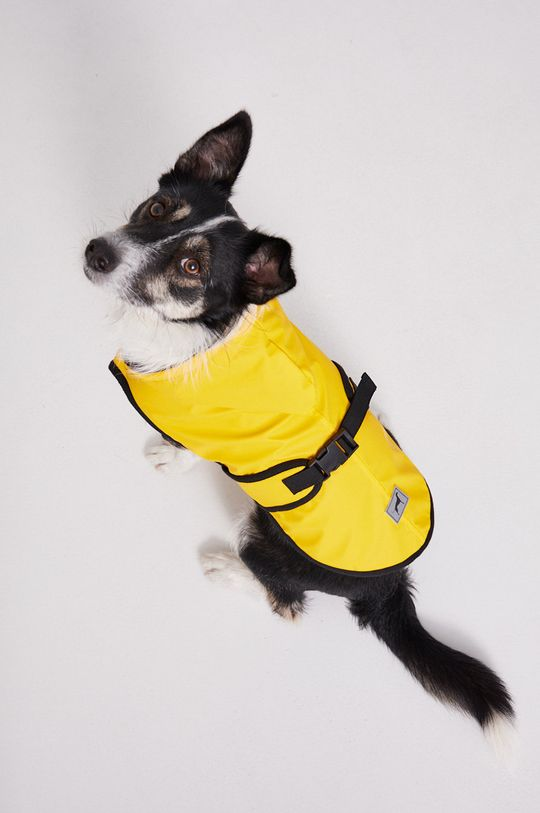 Medicine - Kurtka dla psa Essential Podszewka: 100 % Poliester, Materiał zasadniczy: 100 % Poliuretan