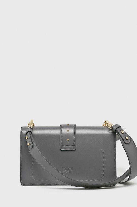 Pinko - Kožená kabelka  Podšívka: 100% Polyester Hlavní materiál: 100% Přírodní kůže
