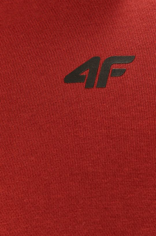 4F - Mikina Pánsky