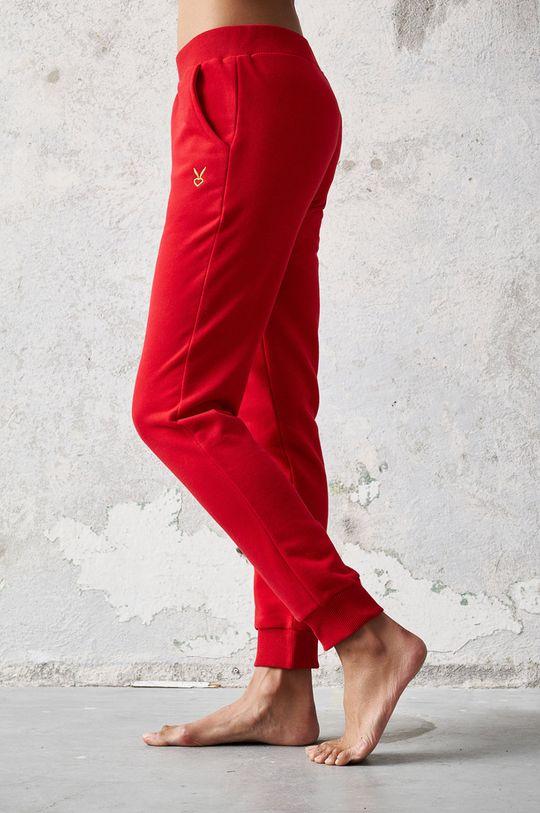 Cardio Bunny - Pantaloni FAE rosu