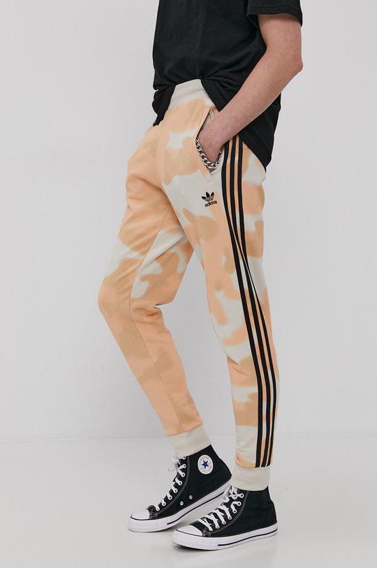 multicolor adidas Originals - Pantaloni