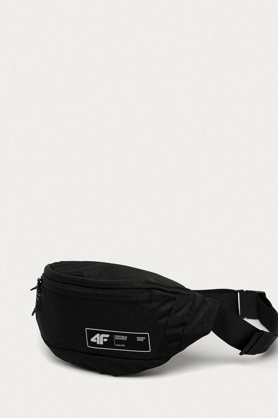4F - Ledvinka černá