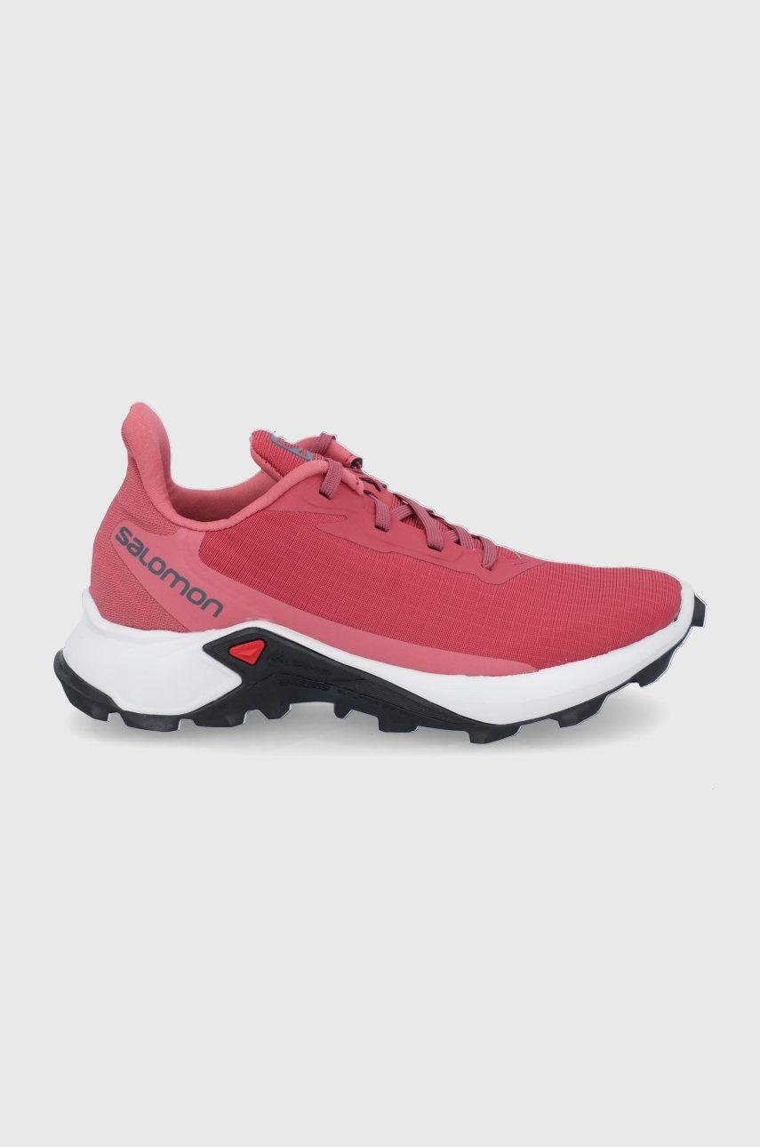 Salomon - Pantofi Alphacross 3