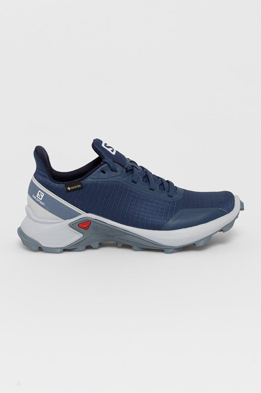 Salomon - Pantofi Alphacross GTX